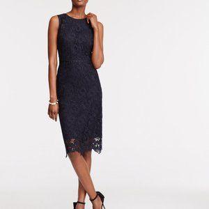 Ann Taylor Navy Blue Floral Lace Sheath Dress 10